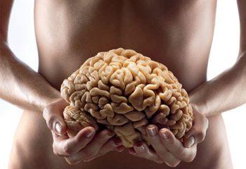 Jelita - Drugi mózg